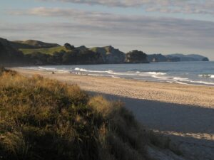 022 Copy 300x225 Walks in Auckland   weekend in the Coromandel