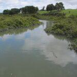 Whau River New Lynn/Avondale