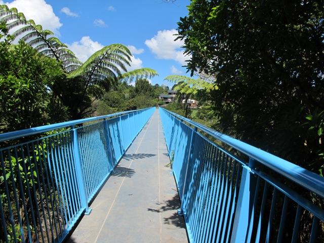 walks in Auckland
