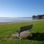 Macleans Park - dog walks in Auckland ©2014 Unleashed ventures Limited
