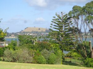 Pigeon Mountain and wetland walk in Auckland