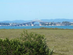 View of Auckland Harbour Bridge from Belmont