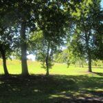 Eastview Reserve, Glen innes