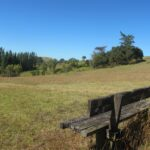 Apirana Reserve and view of Mount Wellington