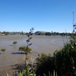 Pakuranga Rotary Walkway © 2013 Unleashed Ventures Limited