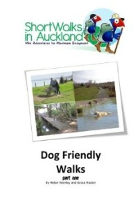 Dog friendly walks in Auckland - part one