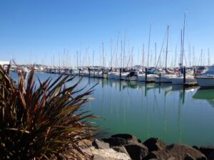 Half Moon Bay marina - ©2013 walksinauckland.com