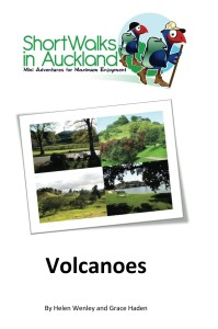 Short Walks in Auckl Cover for Kindle 199x300 Pigeon Mountain and the Wetlands Loop Walk