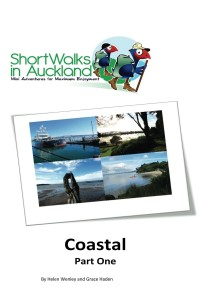 coastal walksin Auckland part one