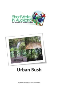 Urban Bush walks in Auckland