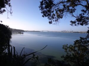 Auckland Harbour © 2011-2013 Unleashed Ventures Limited