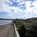 Copy of DSC00711 150x150 Orakei Basin Walkway extended