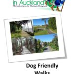 Short Walks in Auckl Cover for Kindle 150x150 Otara Creek Walkway