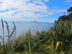 Maurangi Bay Loops Copyright 2014 Unleashed Ventures Limited