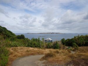 Tirirtiri Matangi Island, Auckland