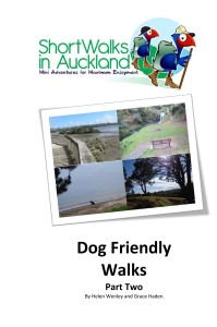 Short Walks in Auckl Cover for Kindle 199x300 Glen Eden Bush and Stream walk