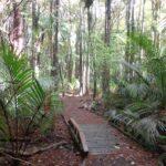 Murphys Bush Scenic Reserve