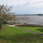 Papakura Estuary Walk Copyright Unleashed Ventures Limited 2014