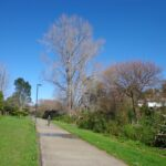 Oratia Twin Streams walk and cycle way