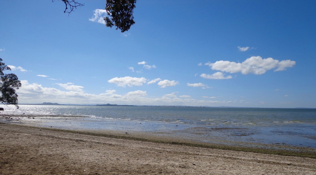 Titirangi and French Bay Loop