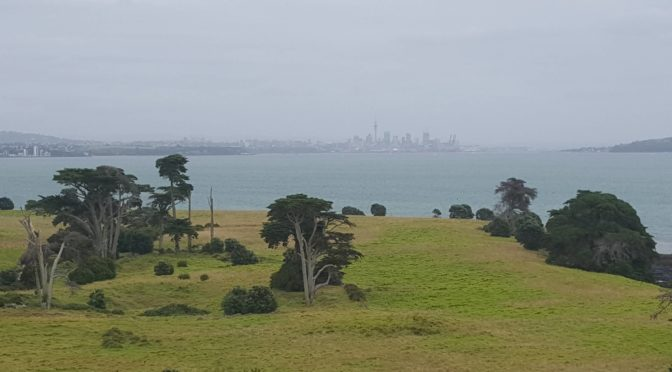 Browns Island Auckland View