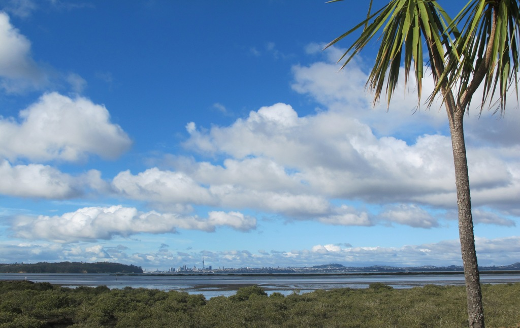 West Harbour Loop View to Auckland City