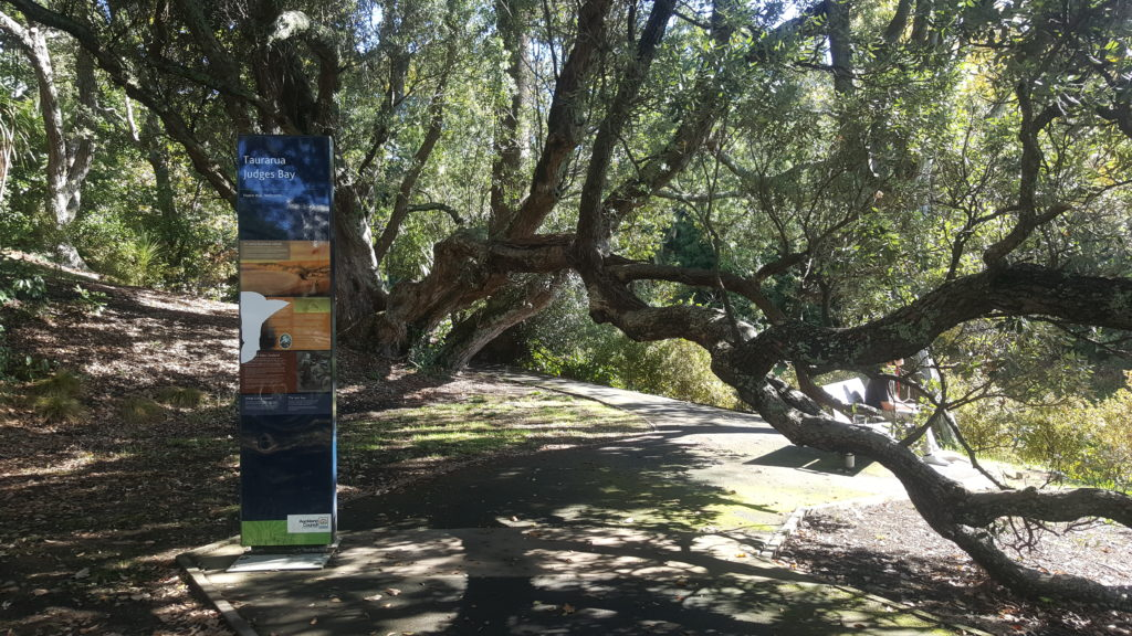 Magnificent Pohutukawa Trees are a feature of Parnell Rose Gardens