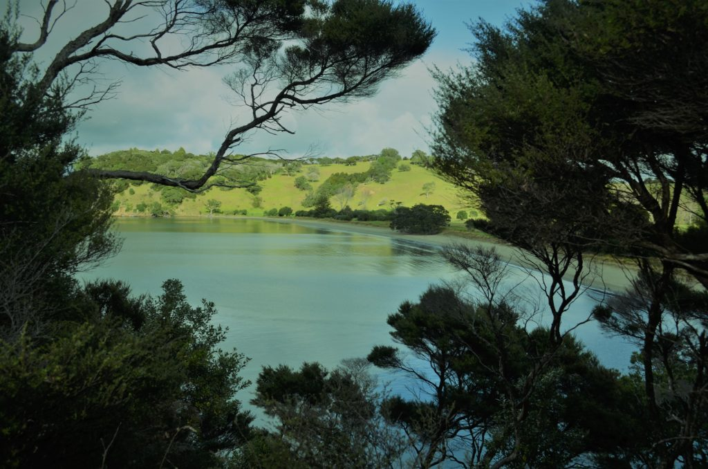 View of Te Muri Beach Mahurangi Regional Park