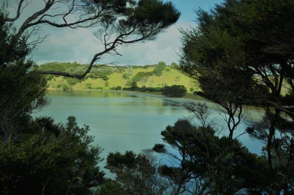 View of Te Muri Beach Mahurangi Regional Park