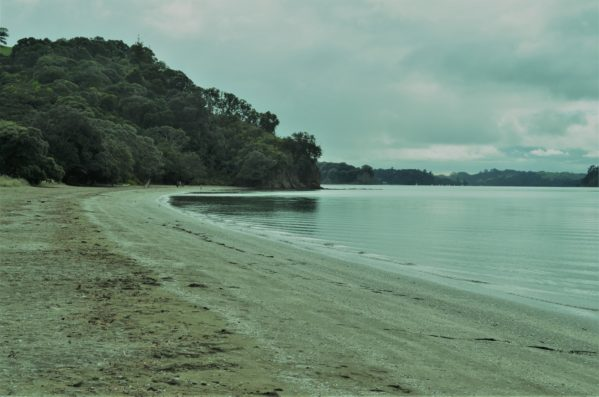Sullivans Beach Mahurangi Regional Park on an overcast day