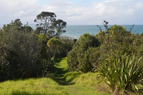 100 Acre Track Long Bay