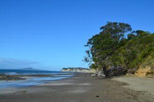 Grannys Bay at Long Bay