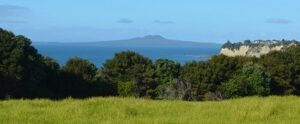 View to Rangitoto from Long Bay Track